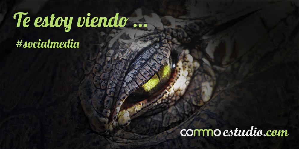 www.commoestudio.com